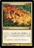 溶岩崩れ/Lavalanche(日本語版)【ARB金R】