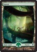 【英語版】森/Forest[ZEN-246]