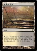 湿地の干潟/Marsh Flats(日本語版)【ZEN土地R】