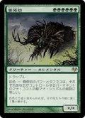【日本語版】尊原初/Primalcrux[EVE緑R]