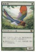 極楽鳥/Birds of Paradise(日本語版)【8ED緑R】