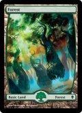 【英語版】森/Forest[ZEN-248]