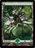 【日本語版】森/Forest[ZEN-249]