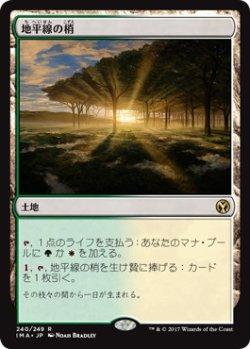 画像1: 【日本語版】地平線の梢/Horizon Canopy[IMA土地R]