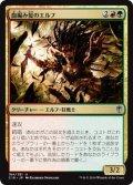 【日本語版】血編み髪のエルフ/Bloodbraid Elf[C16金U]