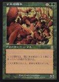 【日本語版】リスの群れ/Squirrel Mob[ODY緑R]