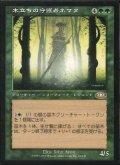【日本語版】木立ちの守護者ネマタ/Nemata, Grove Guardian[PLS緑R]