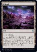 【日本語版】廃墟の地/Field of Ruin[THB土地U]