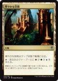 【日本語版】華やかな宮殿/Opulent Palace[C16土地U]