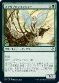 【日本語版】スクリブのレインジャー/Scryb Ranger[TSR緑U]