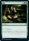 【日本語版】調和/Harmonize[TSR緑U]