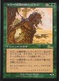 【日本語版】マローの魔術師ムルタニ/Multani, Maro-Sorcerer[ULG緑R]