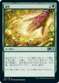 【日本語版】耕作/Cultivate[M21緑U]
