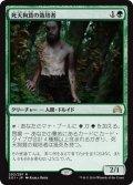 【日本語版】死天狗茸の栽培者/Deathcap Cultivator[SOI緑R]