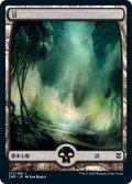 【日本語版】沼/Swamp[ZNR/272]