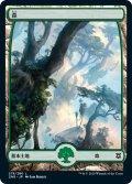 【日本語版】森/Forest[ZNR/278]