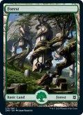 【英語版】森/Forest[ZNR/279]