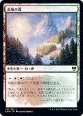 【日本語版】高地の森/Highland Forest[KHM土地C]