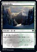 《FOIL》【日本語版】森林の地割れ/Woodland Chasm[KHM土地C]