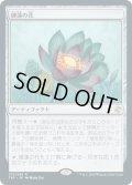 【日本語版】睡蓮の花/Lotus Bloom[TSR茶R]