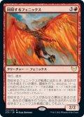 【日本語版】回収するフェニックス/Retriever Phoenix[STX赤R]
