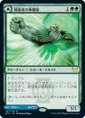 【日本語版】増強者の拳闘家/Augmenter Pugilist[STX緑R]