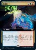 《拡張》【日本語版】再解釈/Reinterpret[C21金R]