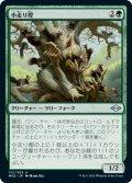 【日本語版】小走り樫/Scurry Oak[MH2緑U]