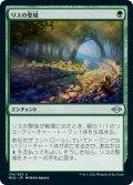 【日本語版】リスの聖域/Squirrel Sanctuary[MH2緑U]