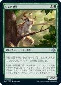 【日本語版】リスの君主/Squirrel Sovereign[MH2緑U]