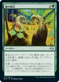 【日本語版】地の変幻/Terramorph[MH2緑U]