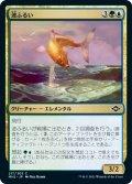 【日本語版】波ふるい/Wavesifter[MH2金C]