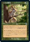 《旧枠》【日本語版】リスの君主/Squirrel Sovereign[MH2緑]