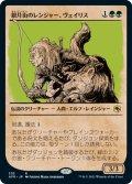 《ショーケース》【日本語版】銀月街のレンジャー、ヴェイリス/Varis, Silverymoon Ranger[AFR緑]