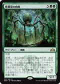 【日本語版】孵卵場の蜘蛛/Hatchery Spider[GRN緑R]