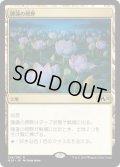 【日本語版】睡蓮の原野/Lotus Field[M20土地R]