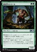 【日本語版】樹皮革のトロール/Barkhide Troll[M20緑U]