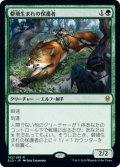 【日本語版】僻境生まれの保護者/Wildborn Preserver[ELD緑R]