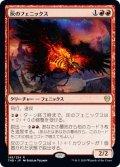 【日本語版】灰のフェニックス/Phoenix of Ash[THB赤R]